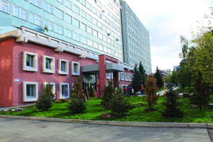 Nijniy Novgorod Devlet Mimarlık88